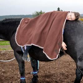 pferd-decke